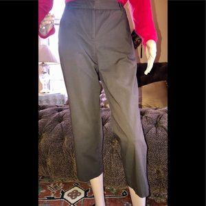 Ann Taylor Loft Petite Ankle Brown Cotton Pants 2P